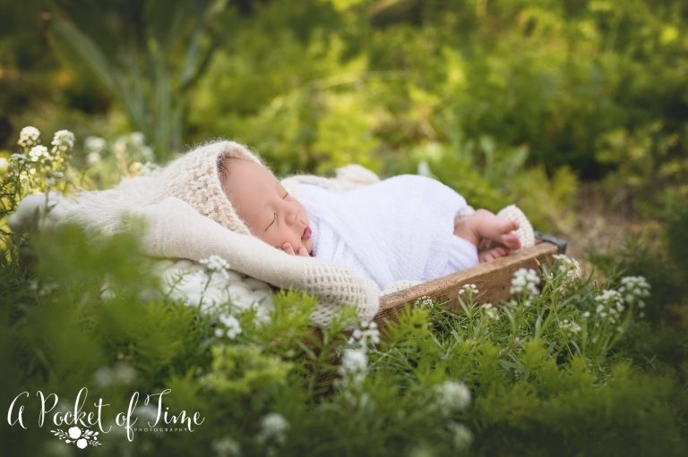 Outdoor newborn photography by a pocket of time photography