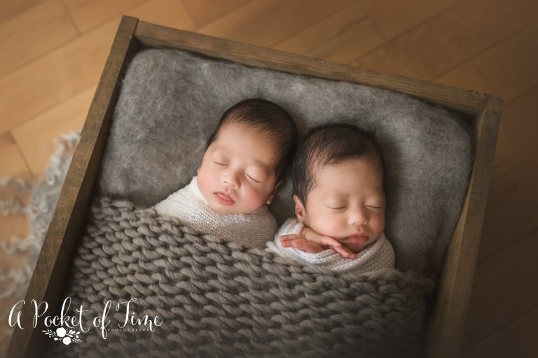 Los angeles newborn twin photography by a pocket of time photography