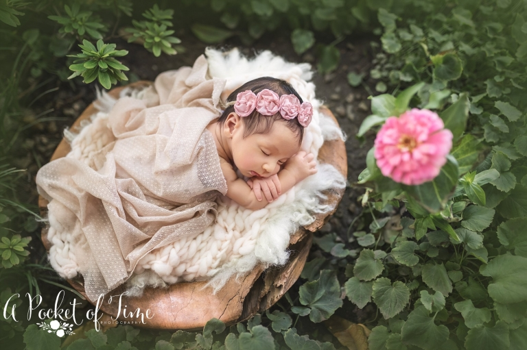 Los angeles outdoor newborn photographer a pocket of time photography