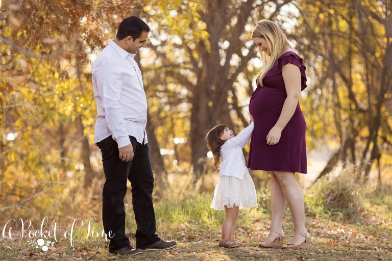 Los Angeles maternity photographer A Pocket of Time Photography_0029.jpg