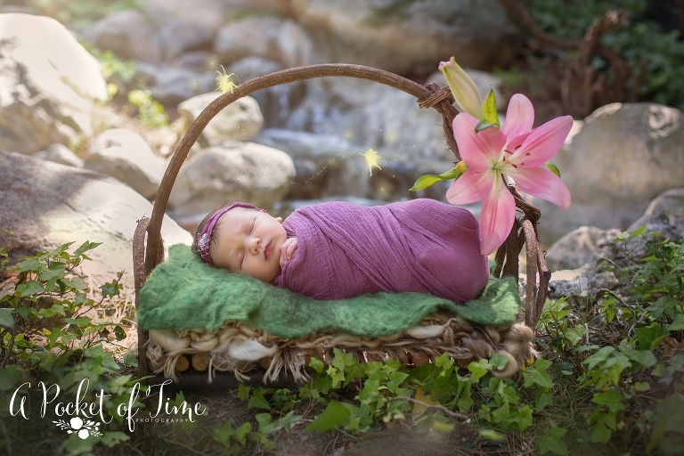 Newborn baby girl newborn photography sjhoot by Los Angeles newborn photographer A Pocket of Time Photography