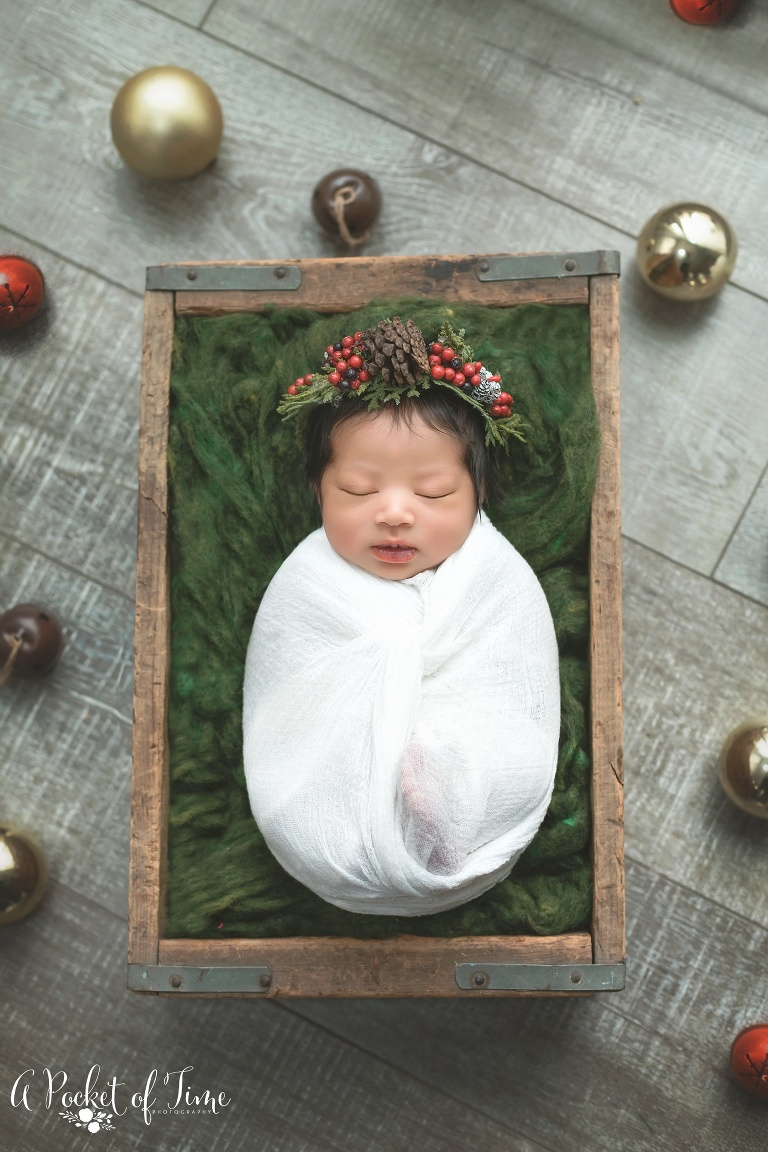 Santa Clarita newborn photography by A Pocket of Time Photography