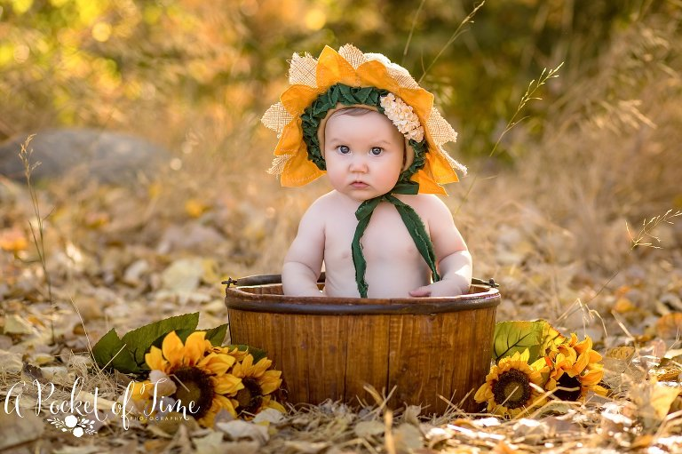 Six month session by A Pocket of Time Photography