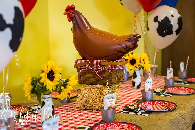 Farm Barnyard themed birthday party photography at Peekaboo Playland by A Pocket of Time Photography