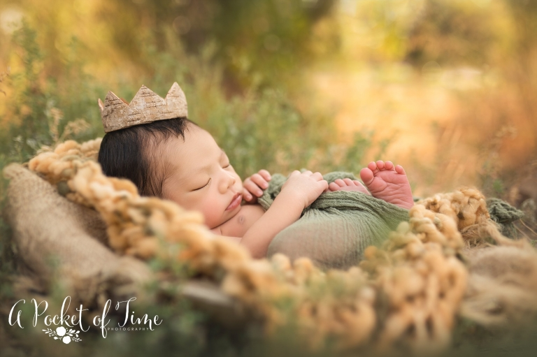 Totoro themed outdoor newborn photo shoot by A Pocket of time Photography