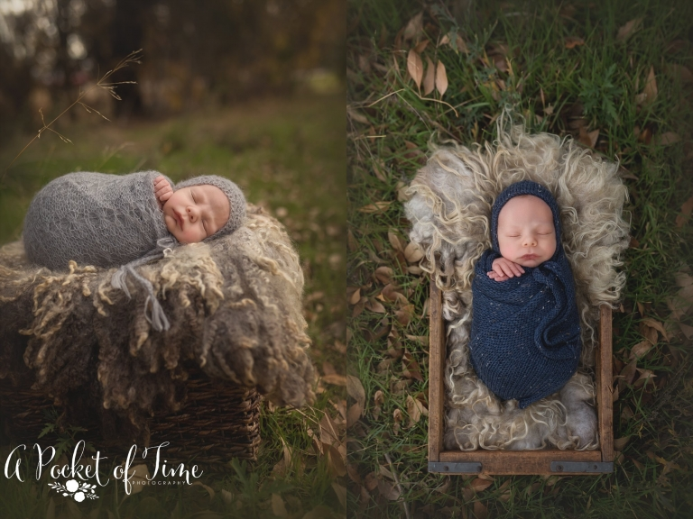 Los Angeles newborn photographer A Pocket of Time Photography_0017.jpg