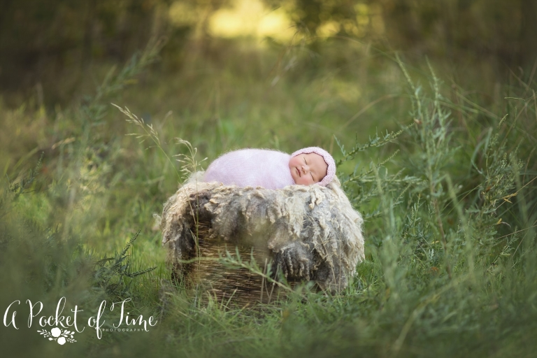 Los Angeles newborn photographer A Pocket of Time Photography