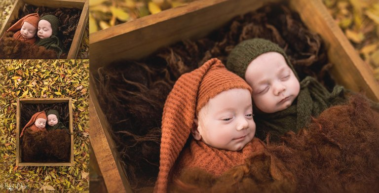 newborn twin boys outdoors by a pocket of time photography